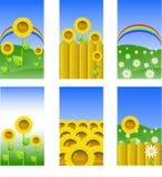 Conjunto de los elementos para el diseño, fondos Imagen de archivo libre de regalías