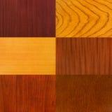 Conjunto de los fondos de madera Imagenes de archivo
