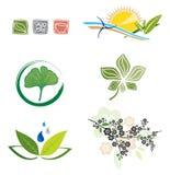 Conjunto de los iconos para el diseño de la insignia Fotos de archivo