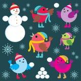 Conjunto de los pájaros del invierno y del hombre de la nieve Imágenes de archivo libres de regalías