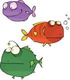 Conjunto de los pescados Fotos de archivo libres de regalías