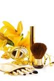 Conjunto de lujo del maquillaje Fotografía de archivo libre de regalías