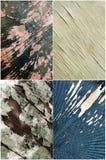 Conjunto de madera del fondo de Grunge Imagenes de archivo