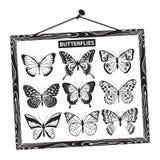 Conjunto de mariposas Imágenes de archivo libres de regalías