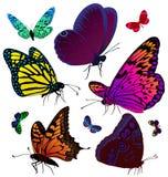 Conjunto de mariposas del color de tatuajes Foto de archivo libre de regalías