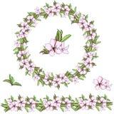 Conjunto de modelos florales Guirnalda del vector de flores coloridas y de hojas verdes Cepillo del vector para adornar las tarje stock de ilustración