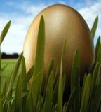 Conjunto de oro del huevo Imagen de archivo