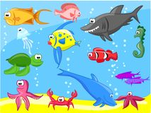 Conjunto de peces marinos Fotos de archivo libres de regalías