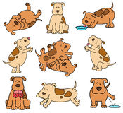 Conjunto de perros de la historieta Imágenes de archivo libres de regalías