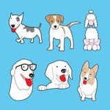 Conjunto de perros lindos Fotografía de archivo libre de regalías