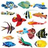 Conjunto de pescados Fotos de archivo