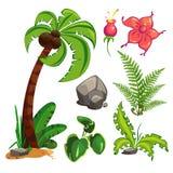 Conjunto de plantas Imagen de archivo