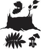 Conjunto de plantas del bosque Foto de archivo