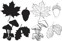 Conjunto de plantas del otoño de la silueta Foto de archivo