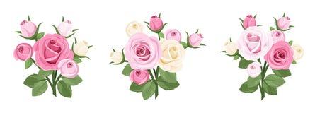Conjunto de ramificaciones de las rosas. Imagenes de archivo