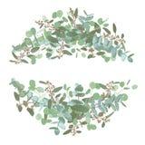 Conjunto de ramos de la boda Floral elegante, verdor, colección del semicírculo Ramo de espiral del eucalipto, populus, robusta t stock de ilustración