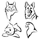 Conjunto de retratos de los animales domésticos Foto de archivo libre de regalías