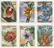 Conjunto de sellos con las flores Foto de archivo libre de regalías