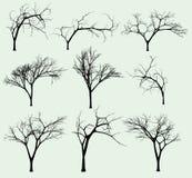 Conjunto de siluetas de árboles stock de ilustración