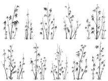 Conjunto de siluetas del vector de bambúes. Imagen de archivo