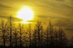 Conjunto de Sun Fotografía de archivo