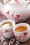 Conjunto de té verde Fotografía de archivo