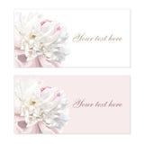Conjunto de tarjetas de felicitación de la flor stock de ilustración