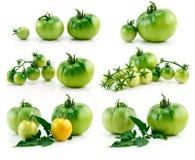 Conjunto de tomates amarillos y verdes maduros aislados Fotografía de archivo libre de regalías