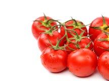 Conjunto de tomates de cereja Fotografia de Stock