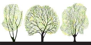 Conjunto de tres árboles Fotos de archivo