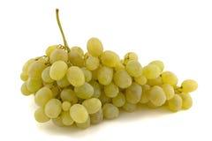 Conjunto de uvas verdes. Imagem de Stock Royalty Free