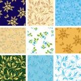 Conjunto de varios modelos inconsútiles con la flora Imágenes de archivo libres de regalías