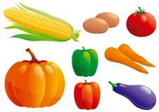Conjunto de verduras Imagen de archivo