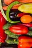 Conjunto de verduras frescas Imágenes de archivo libres de regalías