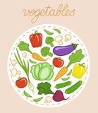 Conjunto de verduras frescas Ilustración del vector Fotografía de archivo