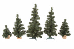 Conjunto del árbol de navidad aislado en el fondo blanco Fotografía de archivo