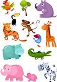 Conjunto del animal Imagen de archivo