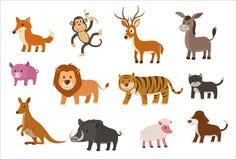 Conjunto del animal Fotografía de archivo libre de regalías