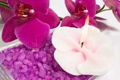 Conjunto del BALNEARIO de Aromatherapy Fotografía de archivo
