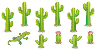 Conjunto del cactus del vector Imagenes de archivo