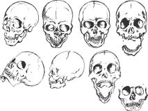 Conjunto del cráneo de Grunge Foto de archivo libre de regalías