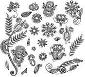 Conjunto del diseño negro de la flor Fotografía de archivo libre de regalías
