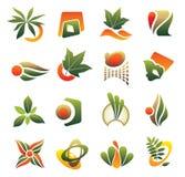 Conjunto del elemento del diseño Imagen de archivo
