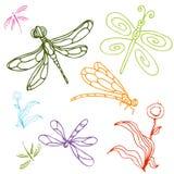 Conjunto del gráfico de la libélula Fotografía de archivo libre de regalías
