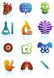 Conjunto del icono de la biología ilustración del vector