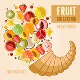 Conjunto del icono de la fruta Imagen de archivo libre de regalías