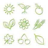 Conjunto del icono de la naturaleza Imagen de archivo libre de regalías
