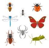 Conjunto del icono del insecto Fotos de archivo