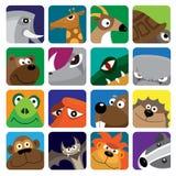 Conjunto del icono del vector de los animales salvajes Imagen de archivo