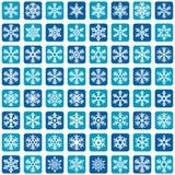 Conjunto del icono del vector del copo de nieve Fotografía de archivo